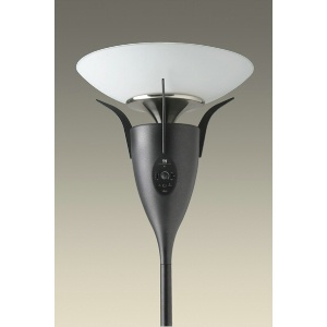 Wireless Speaker Floor Lamp