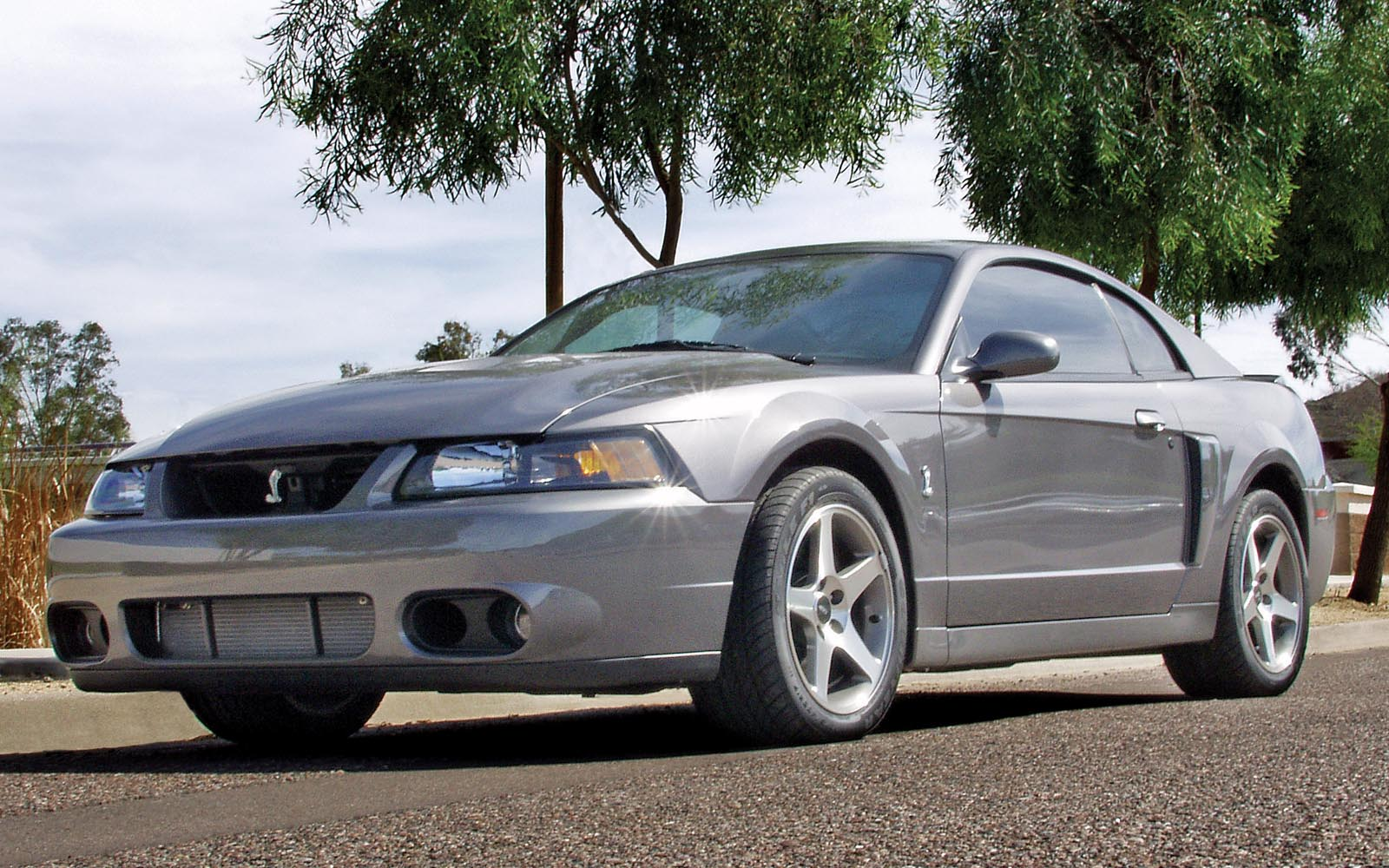 Ford Mustang 1994 2004 Thunderform Custom Amplified Subwoofer