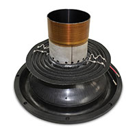 Subwoofer Single vs Dual Voice Coils